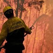 Waldbrände in Portugal breiten sich aus