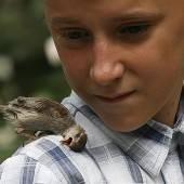 Tierische Freundschaft in Russland