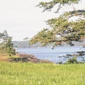 Campen auf Salt Spring Island