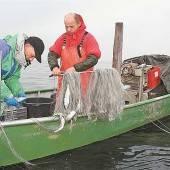 Der Bodensee ist nicht zusauber, sondern überfischt