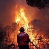 Waldbrände in Portugal weiter außer Kontrolle