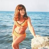 Ausgezeichnete Badenixen Die zehn Bikini-Gewinnerinnen /A6