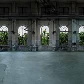 Wuchernde Pflanzen im Kunstraum