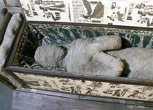 Das Skelett besteht überwiegend aus Plastik, doch der Schädel ist echt.