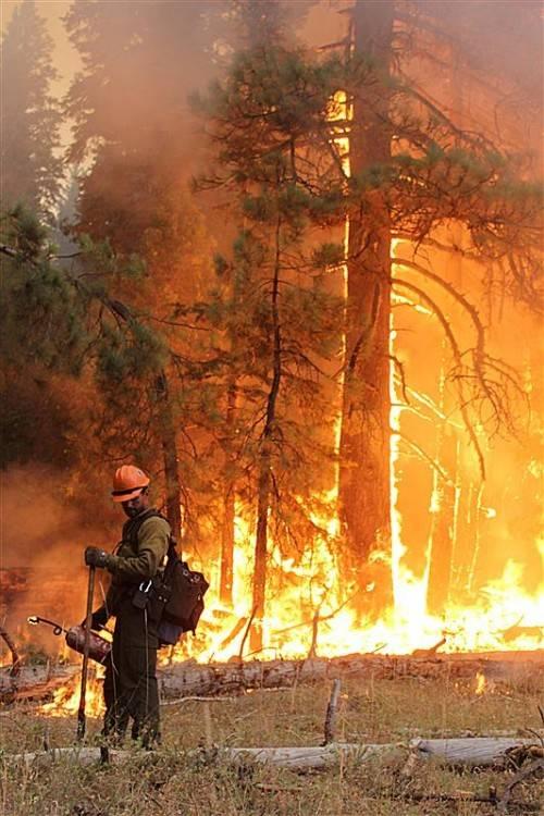 Der Brand zerstörte eine Fläche von über 960 Quadratkilometern.