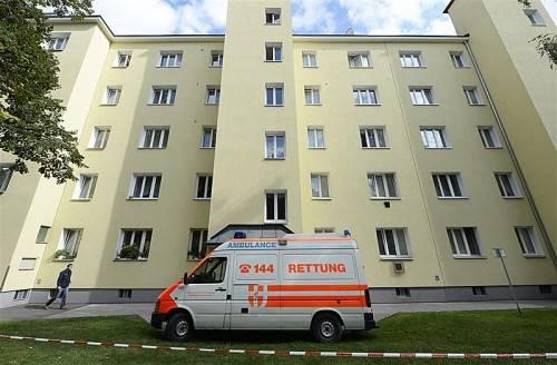 Die 38-jährige Mutter hat sich aus dem Fenster gestürzt, sie schwebt in Lebensgefahr. Foto: Apa