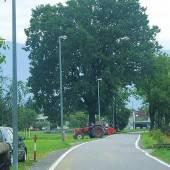 Beleuchtungsfehler in Lustenau beseitigt