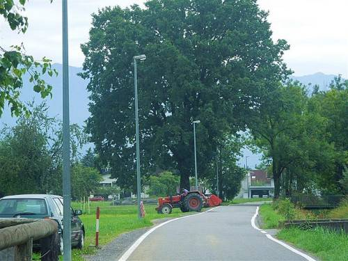 Die Gemeinde reagierte auf die Bürger-Kritik an der Straßenbeleuchtung im Bürgerforum. Foto: cth