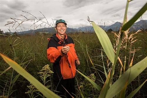 Die Streuwiesen sind laut Thomas Ellmauer ein ökologischer Schatz. Foto: VN/Steurer