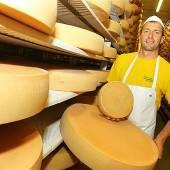 Beste Qualität bei der Käseerzeugung