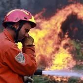 18-jähriger Brandstifter in Portugal verhaftet