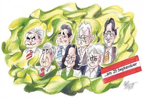 Kopfsalat! Karikatur: Silvio Raos