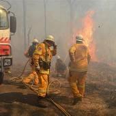 Kampf gegen Buschfeuer