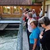 Alte Mühle liefert Strom aus Wasserkraft