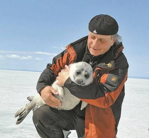 Wolfgang Mertin mit einer Baikalrobbe im Norden Russlands.  Foto: Privat