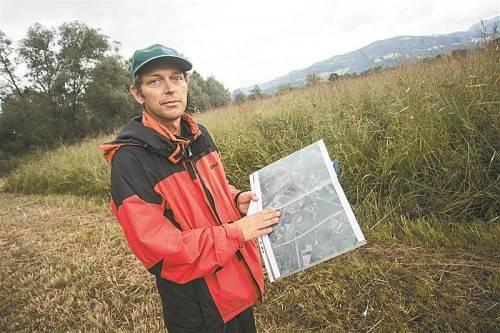 Zuletzt war das Pfeifengras Untersuchungsgegenstand im Ried. Experte Thomas Ellmauer führte die Untersuchungen durch. Foto: VN/Steurer