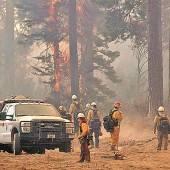 Brand am Yosemite-Park viertgrößter in Kaliforniens Geschichte