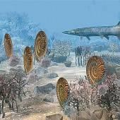 Wiener Paläontologen rekonstruierten marines Massensterben
