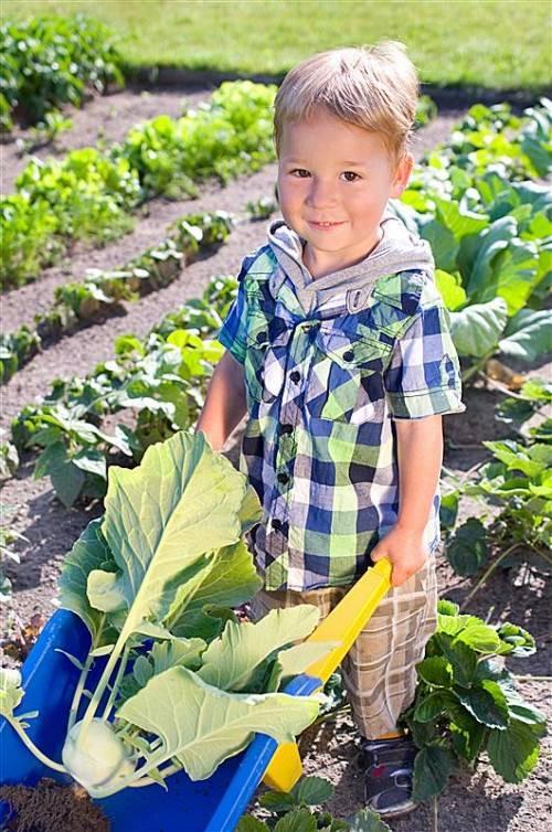 Früh übt sich, wer ein Genussspecht werden möchte. Das Bewusstsein für eine gute Ernährung muss schon in der Kindheit geschaffen werden.
