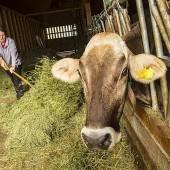Morgen heißt es von 10 bis 17 Uhr ineluaga Tag bei Land- und Gastwirten in Braz