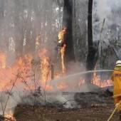 Australische Feuerwehr erwartet Großkampftag