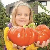 Garten-Gigant in Kinderhand