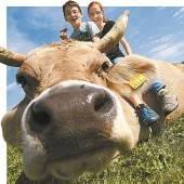 VN-Tierschutzpreis verliehen an Landwirte und Tierretter