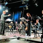Vorarlberger schickt Mozart zum Zahnarzt