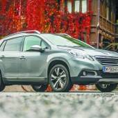 Peugeot legt kleinen Kombi höher