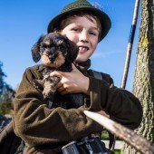 Hundesteuer in Dornbirn sorgt für heftige Kritik