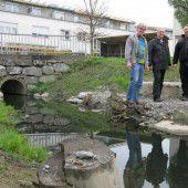 Lustenau will Gewässer naturnah gestalten