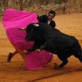 Stierkampf in Spanien zum Kulturgut erklärt