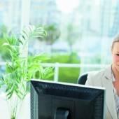 Grünpflanzen sind gut für das Büroklima