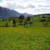Erhaltung der Wiesen und Almenstreit-Ende