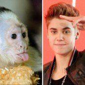 Jetzt ist Bieber auf den Hund gekommen
