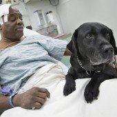 Happy End für Blinden und seinen Labrador