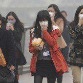 Gefährlich hohe Werte: Smogalarm in Schanghai