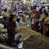 Erste Erdnussernte des Jahres gefeiert