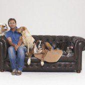 Im Auftrag der Hunde