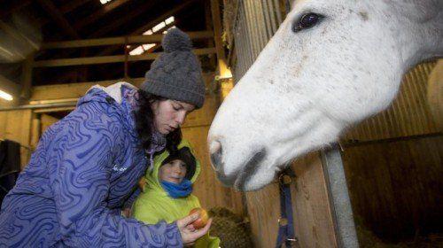 Im Hofkindergarten gehören Tiere zum Alltag.  Foto: VN/Hartinger