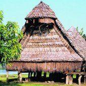 Tambaran-Häuser haben in den Stämmen vielerlei Verwendung