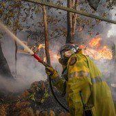 Buschbrand wütet im Westen von Australien