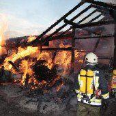 Stall in Vollbrand – 70 Hühner sterben im Feuer