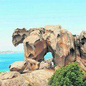 Felsen in Form eines Bären
