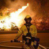 Buschbrände treiben Tausende in die Flucht