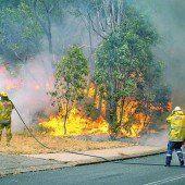 Buschbrand in Australien