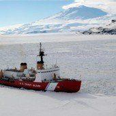 Neue Retter in der Antarktis