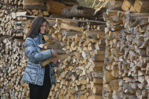 Eine serbische Frau soll der Beschuldigten Brennholz vom Stapel gestohlen haben. Der Vorwurf erwies sich als Verunglimpfung und kostet die Rumänin zwei Wochen hinter Gittern. Foto: VN/Paulitsch