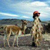 In der Weite der Anden