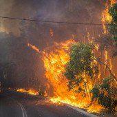 Feuerwehr kämpft gegen Hunderte Brände in Australien